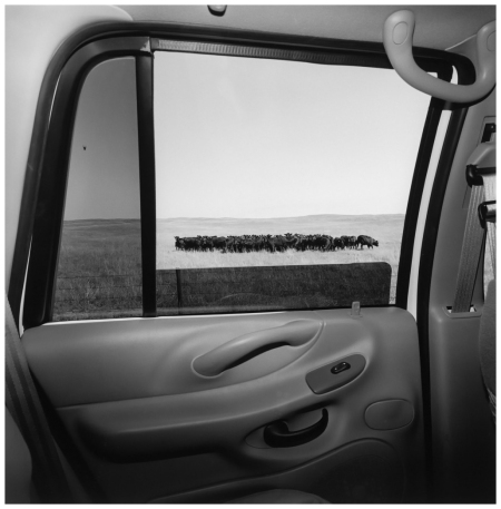 Lee Friedlander, Nebraska, 1999